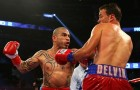 Miguel Cotto Returns to Form With Three-Round Thrashing of Delvin Rodriguez