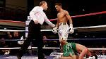 Selby faces Koasicha in WBC title eliminator