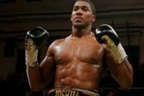 Hearn: Joshua will get title shot in 12 months